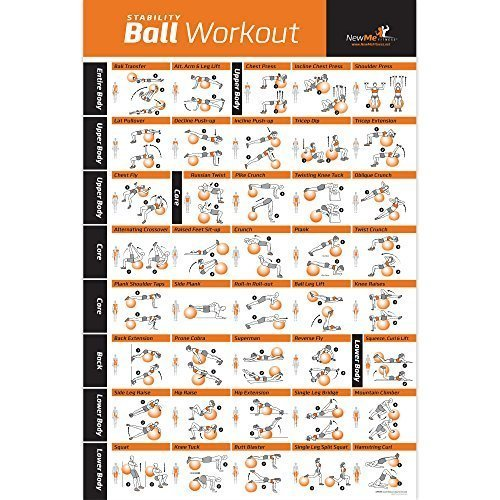 4-Pack-Laminated-Home-Gym-Exercise-Posters-BODYWEIGHT-Stretching-Resistance-Stability-Ball-Build-Muscle-Tone-and-Strengthen-Your-Entire-Body-Large-and-Easy-to-Follow-Fitness-Chart-0-2