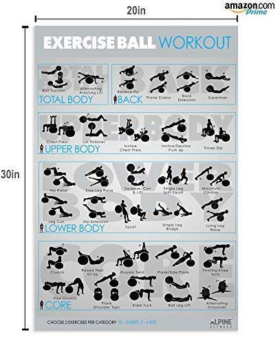 7-Exercise-Fitness-Posters-30x20-Large-Laminated-Gym-Planner-Charts-for-Great-Workouts-Guide-to-Build-Strength-Stretch-Bodyweight-Ball-Dumbbell-Barbell-Band-Kettlebell-0-0