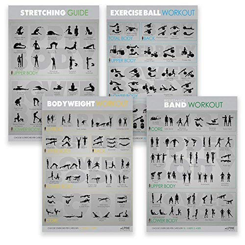 7-Exercise-Fitness-Posters-30x20-Large-Laminated-Gym-Planner-Charts-for-Great-Workouts-Guide-to-Build-Strength-Stretch-Bodyweight-Ball-Dumbbell-Barbell-Band-Kettlebell-0-2