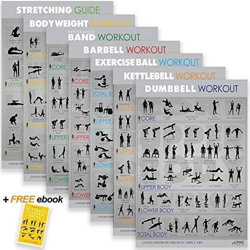 7-Exercise-Fitness-Posters-30x20-Large-Laminated-Gym-Planner-Charts-for-Great-Workouts-Guide-to-Build-Strength-Stretch-Bodyweight-Ball-Dumbbell-Barbell-Band-Kettlebell-0