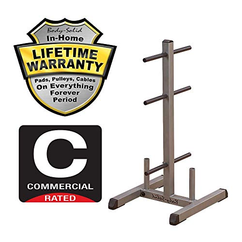 Body-Solid-Standard-Weight-Plate-Tree-and-Bar-Holder-GSWT-0-3